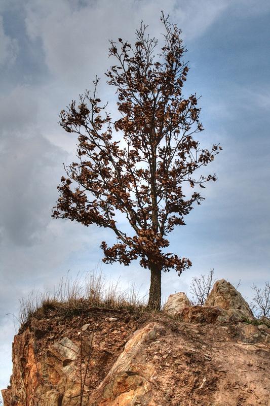 Stromek